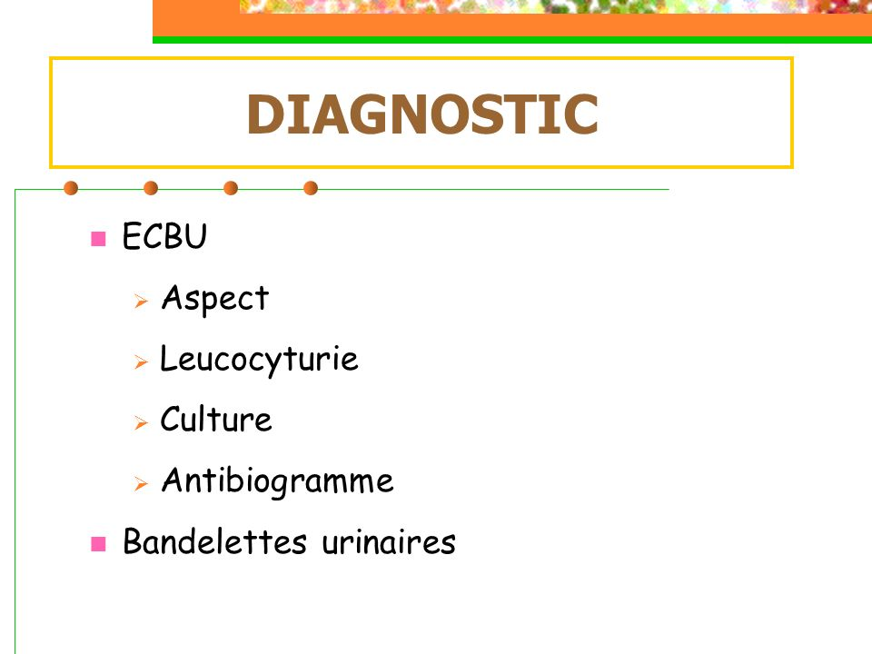 DIAGNOSTIC ECBU Aspect Leucocyturie Culture Antibiogramme
