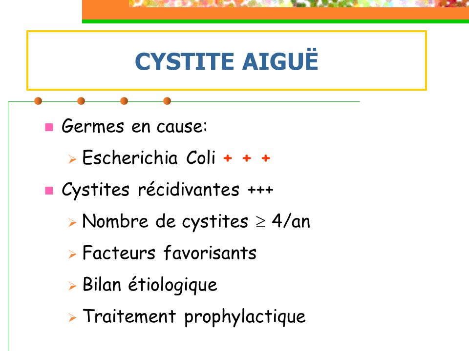 CYSTITE AIGUË Germes en cause: Escherichia Coli + + +