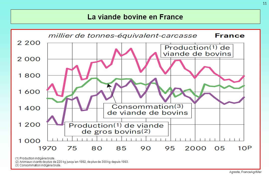 La viande bovine en France