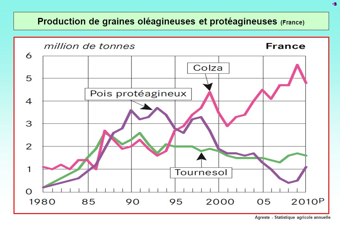 Production de graines oléagineuses et protéagineuses (France)