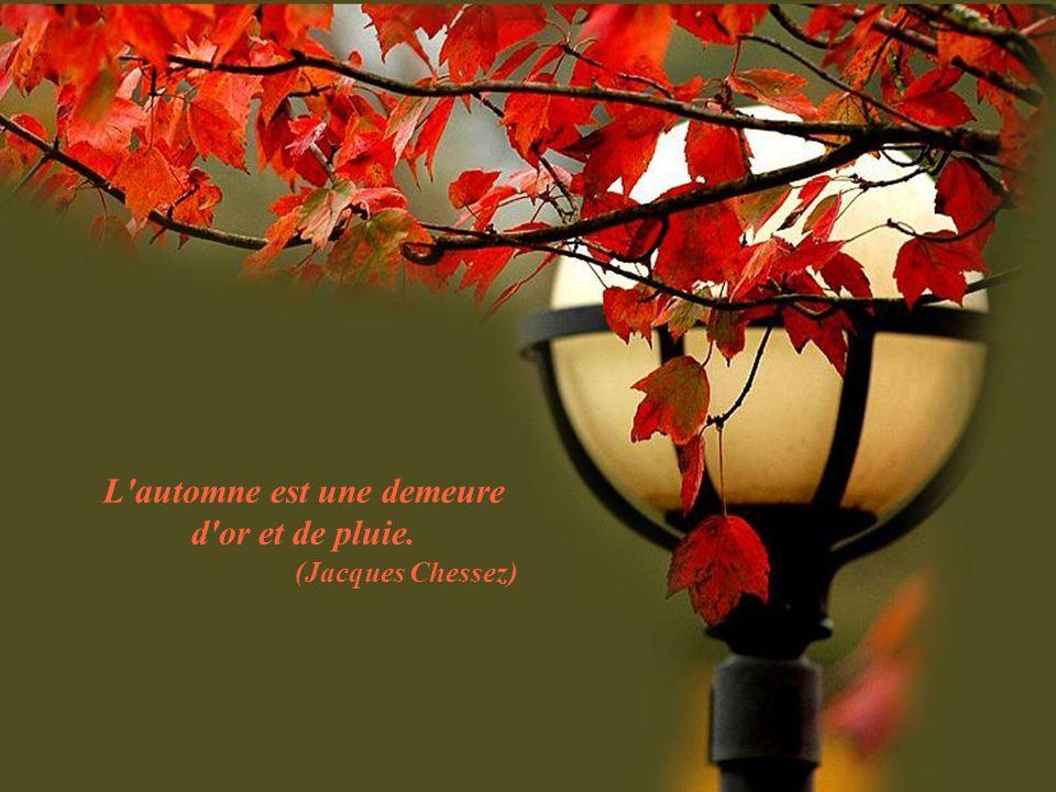 L automne est une demeure