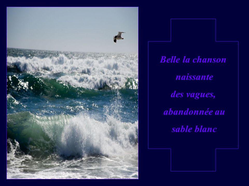 Belle la chanson naissante des vagues, abandonnée au sable blanc
