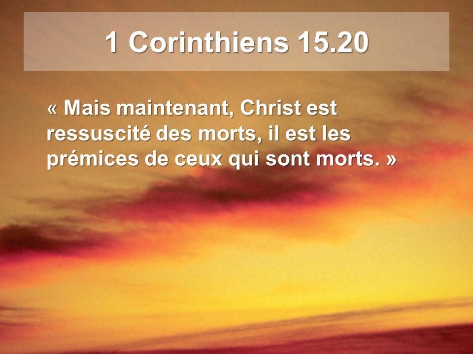 1 Corinthiens 15.20 « Mais maintenant, Christ est ressuscité des morts, il est les prémices de ceux qui sont morts. »