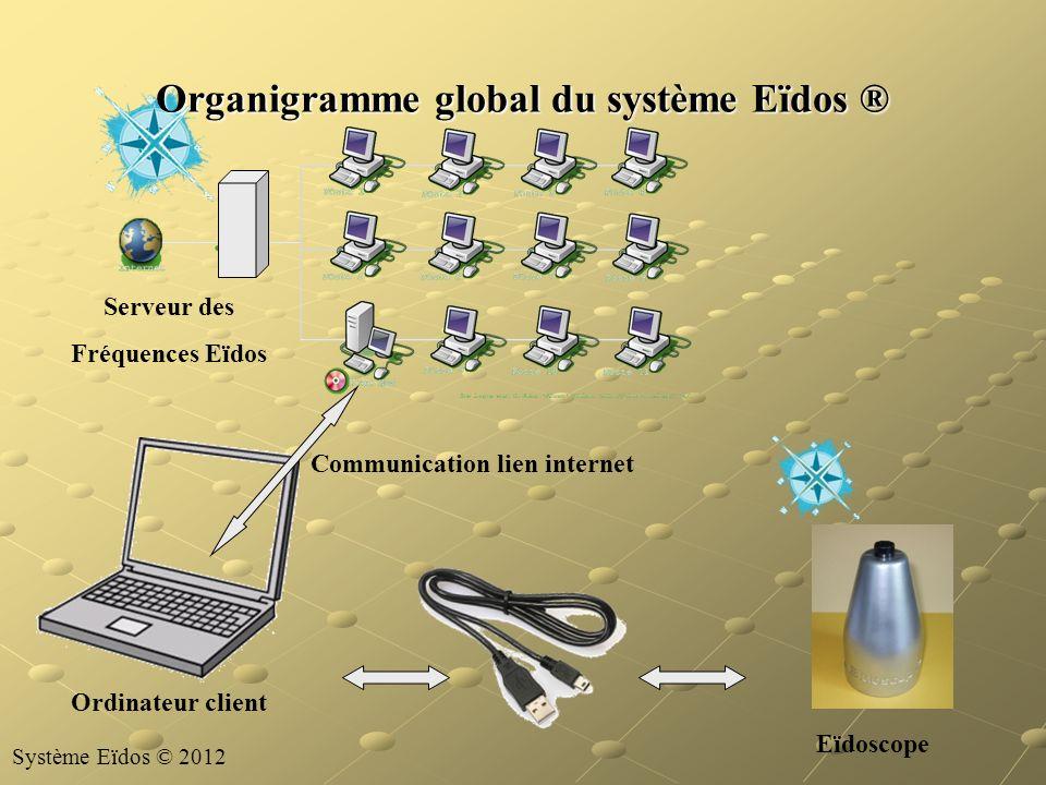 Organigramme global du système Eïdos ®