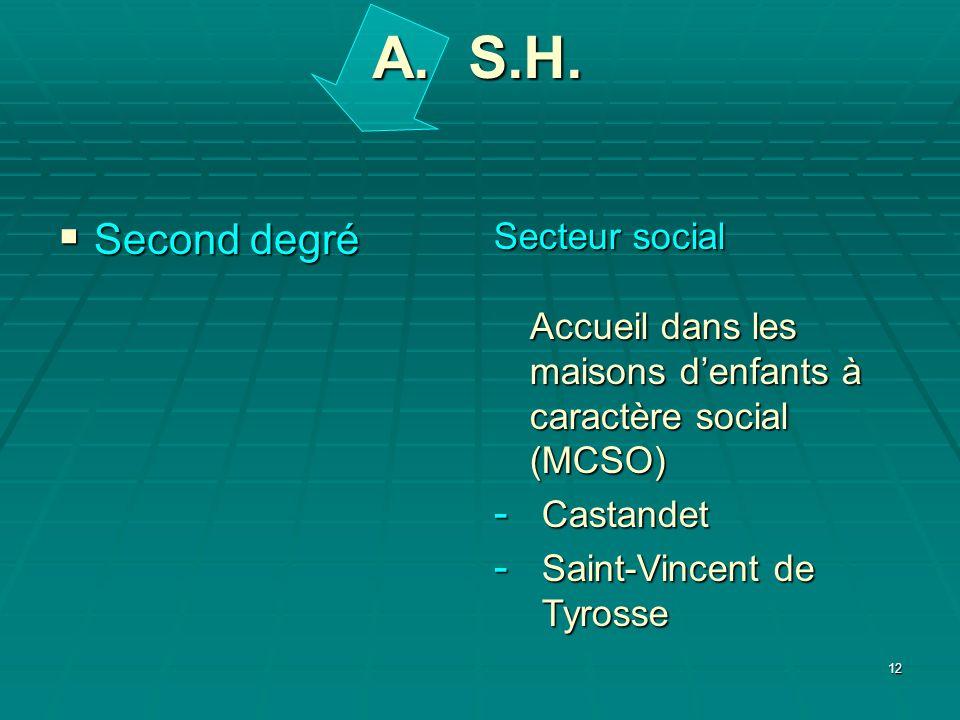 A. S.H. Second degré. Secteur social Accueil dans les maisons d'enfants à caractère social (MCSO)
