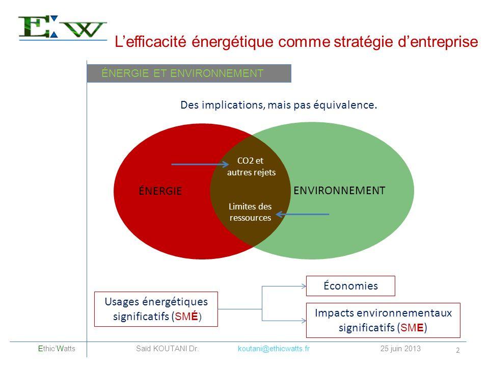 L'efficacité énergétique comme stratégie d'entreprise