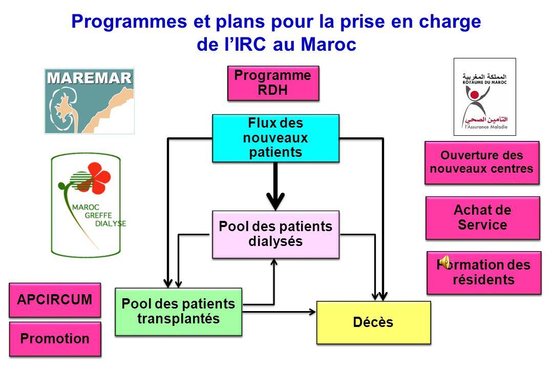 Programmes et plans pour la prise en charge de l'IRC au Maroc