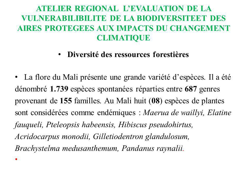 Diversité des ressources forestières