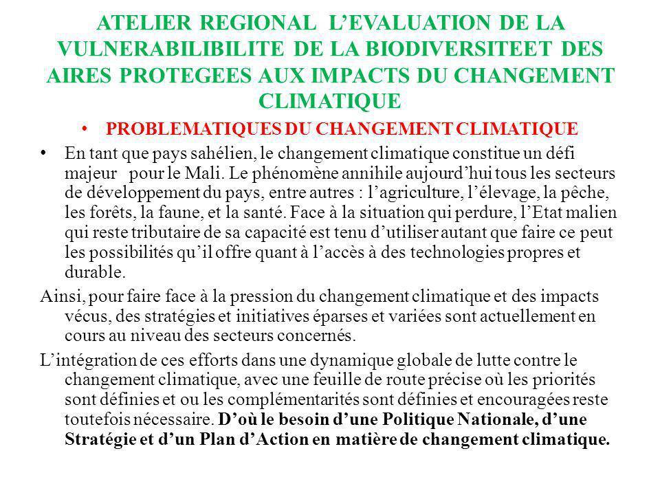 PROBLEMATIQUES DU CHANGEMENT CLIMATIQUE