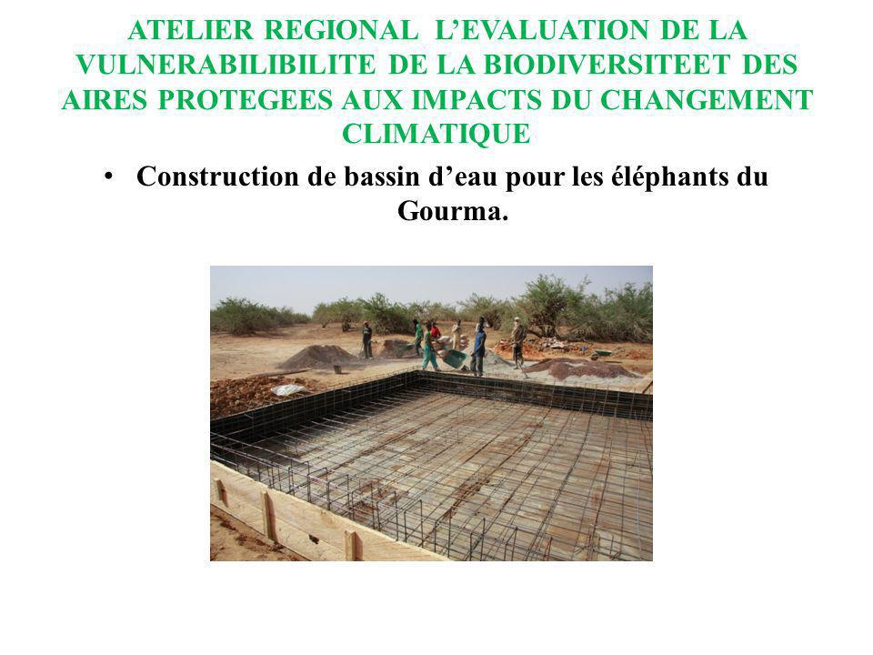 Construction de bassin d'eau pour les éléphants du Gourma.