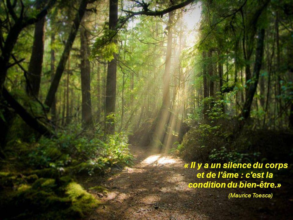 « Il y a un silence du corps et de l âme : c est la condition du bien-être.»
