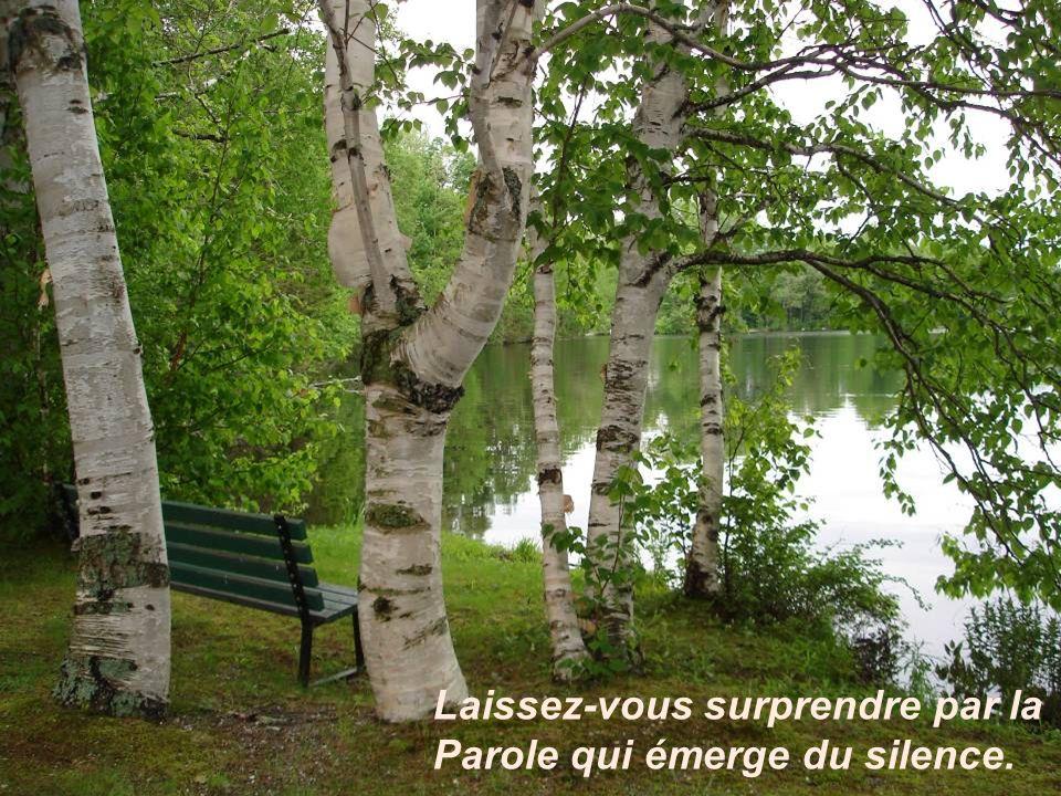 Laissez-vous surprendre par la Parole qui émerge du silence.