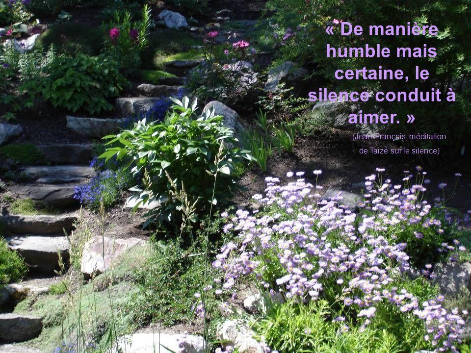 « De manière humble mais certaine, le silence conduit à aimer. »