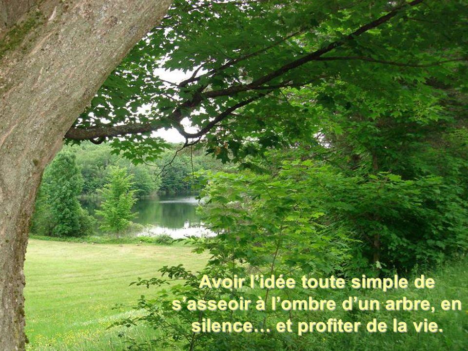 Avoir l'idée toute simple de s'asseoir à l'ombre d'un arbre, en silence… et profiter de la vie.