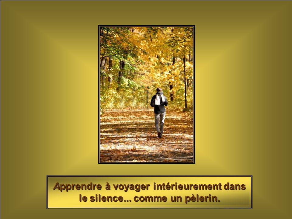 Apprendre à voyager intérieurement dans le silence... comme un pèlerin.