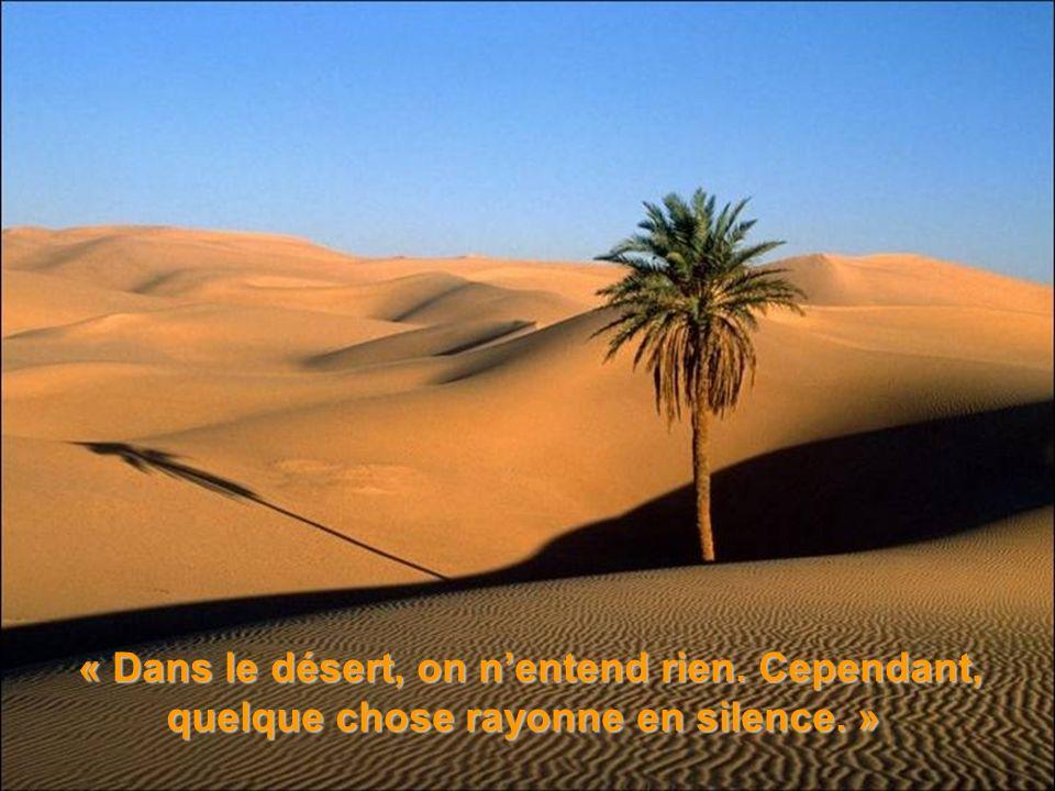 « Dans le désert, on n'entend rien