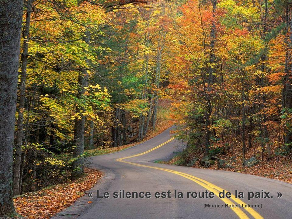 « Le silence est la route de la paix. »