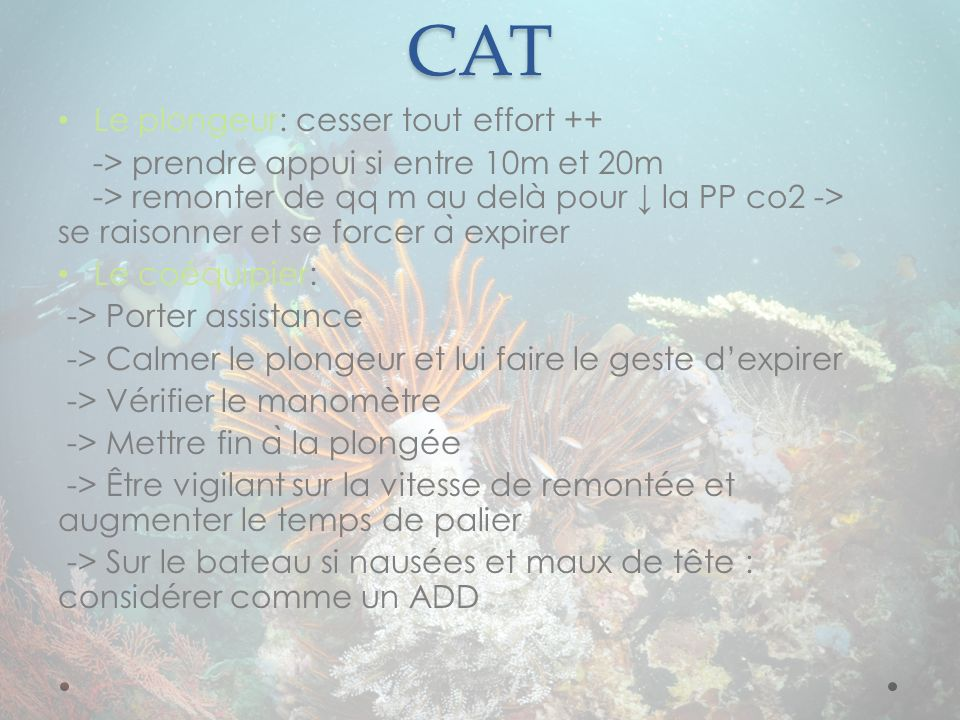 CAT Le plongeur: cesser tout effort ++