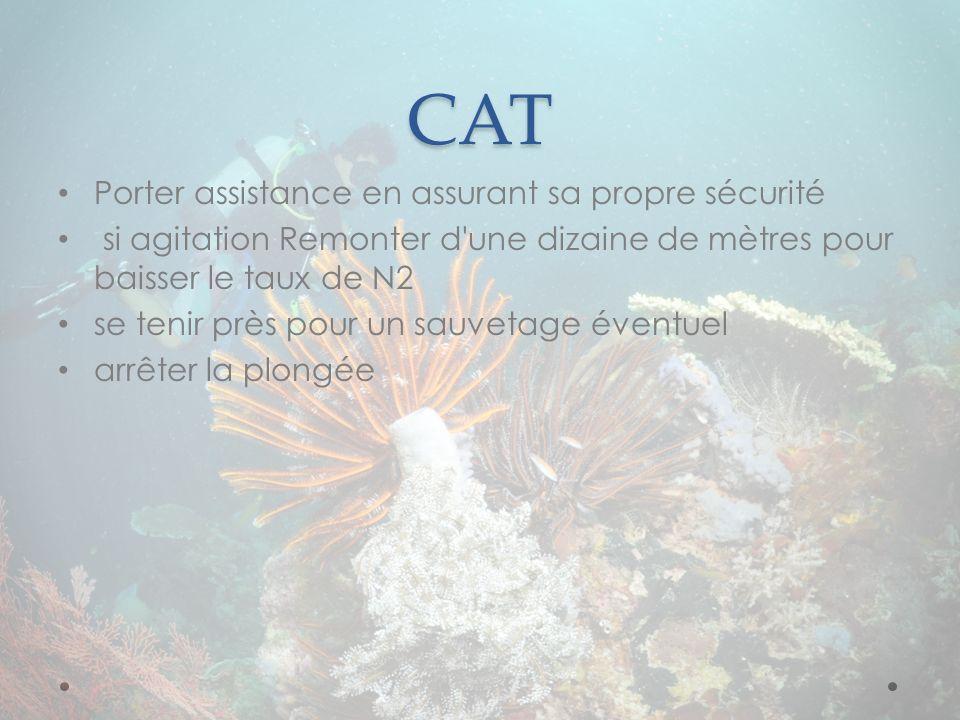 CAT Porter assistance en assurant sa propre sécurité
