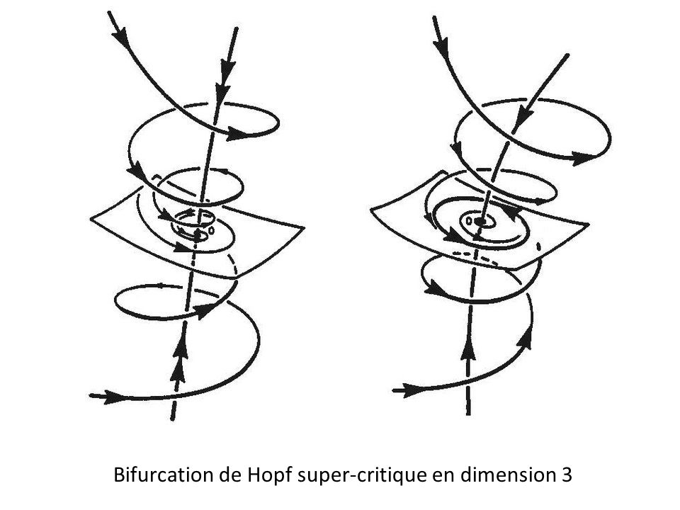 Bifurcation de Hopf super-critique en dimension 3