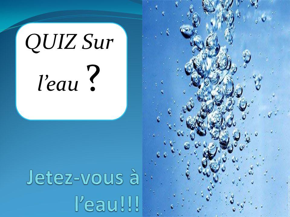 QUIZ Sur l'eau Jetez-vous à l'eau!!!