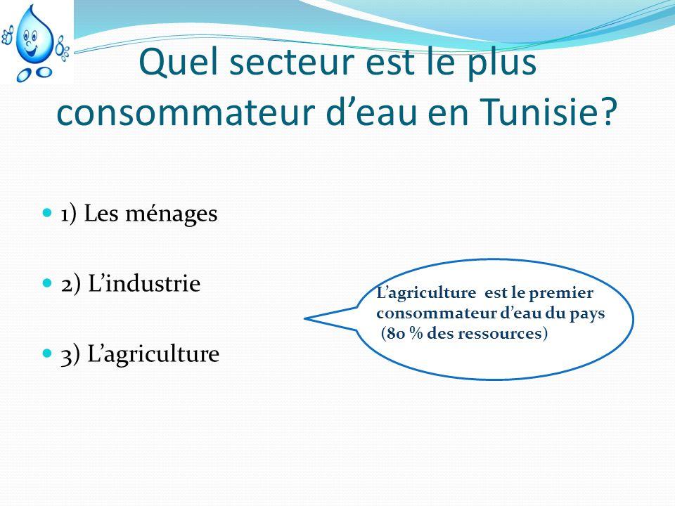 Quel secteur est le plus consommateur d'eau en Tunisie