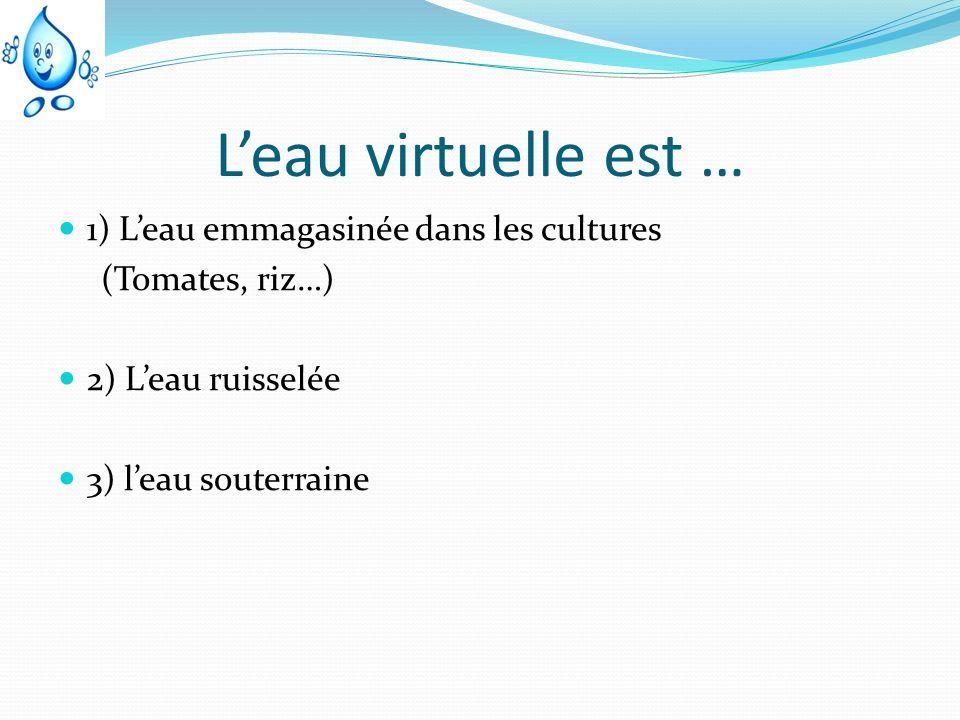 L'eau virtuelle est … 1) L'eau emmagasinée dans les cultures