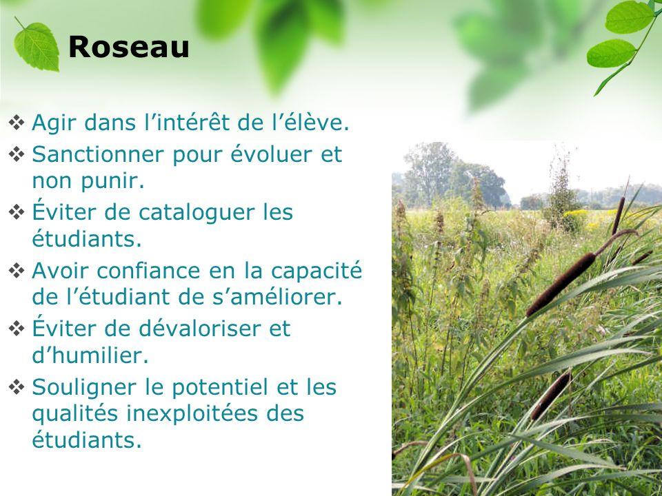 Roseau Agir dans l'intérêt de l'élève.