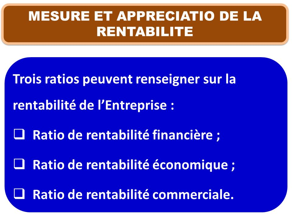 MESURE ET APPRECIATIO DE LA RENTABILITE