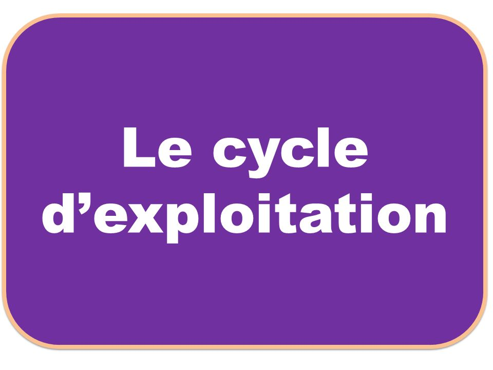 Le cycle d'exploitation