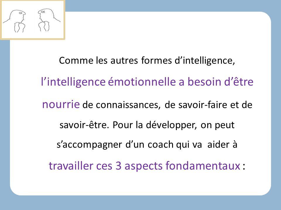 Comme les autres formes d'intelligence, l'intelligence émotionnelle a besoin d'être nourrie de connaissances, de savoir-faire et de savoir-être.