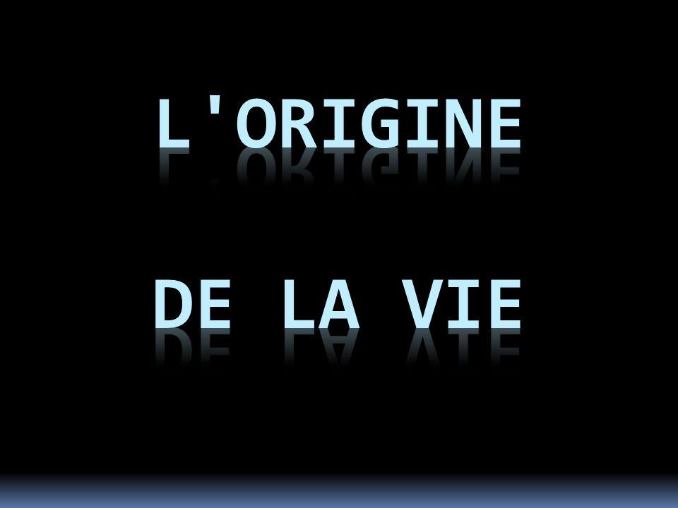 L Origine de la Vie