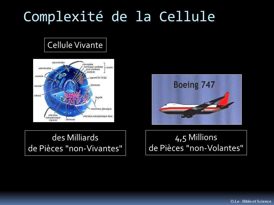 Complexité de la Cellule