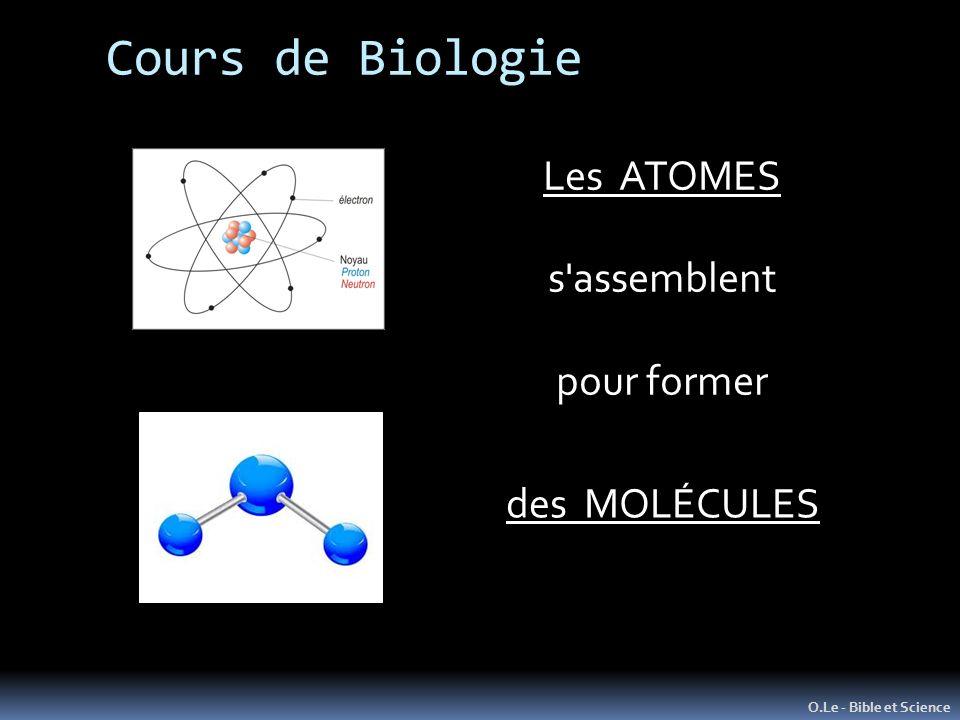 Cours de Biologie Les ATOMES s assemblent pour former des MOLÉCULES