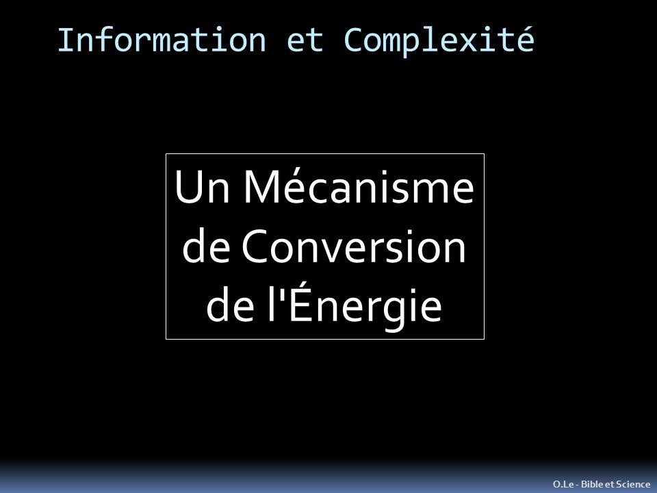 Information et Complexité