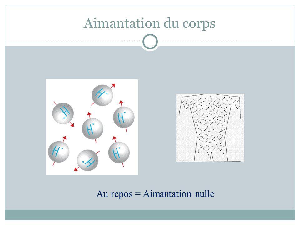 Aimantation du corps Au repos = Aimantation nulle