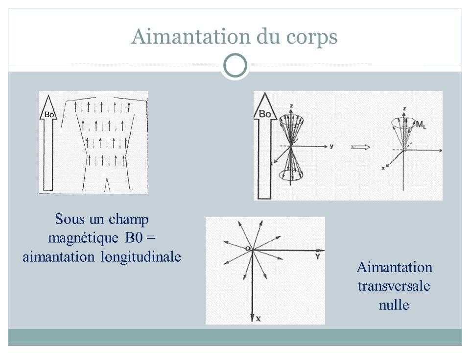 Aimantation du corps Sous un champ magnétique B0 = aimantation longitudinale.