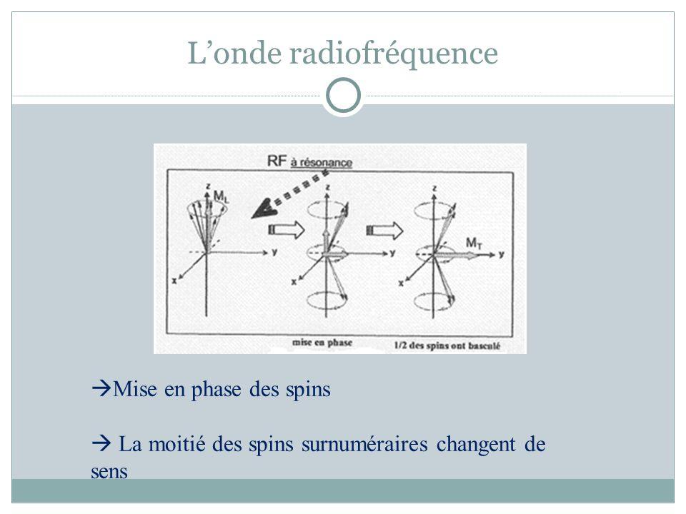 L'onde radiofréquence