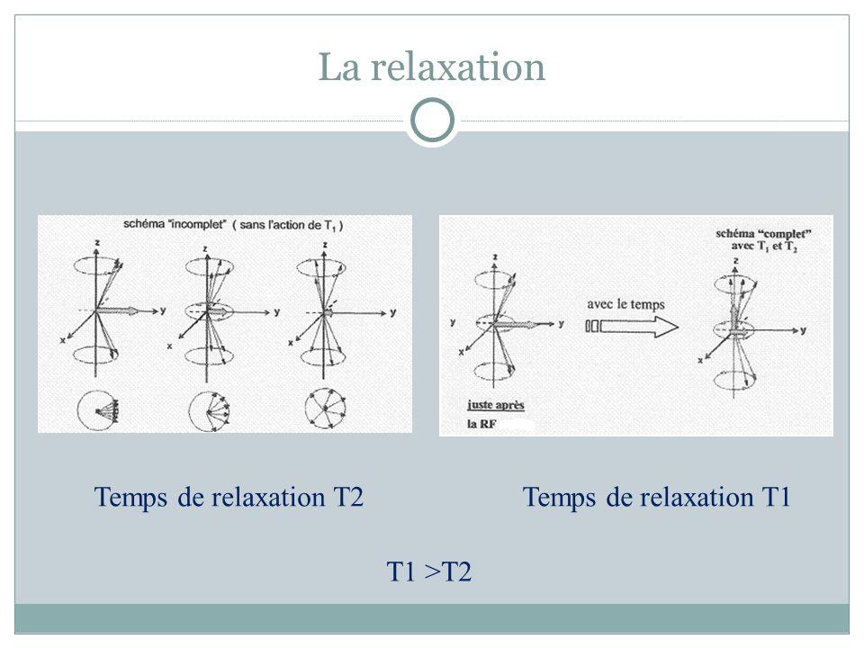 La relaxation Temps de relaxation T2 Temps de relaxation T1 T1 >T2