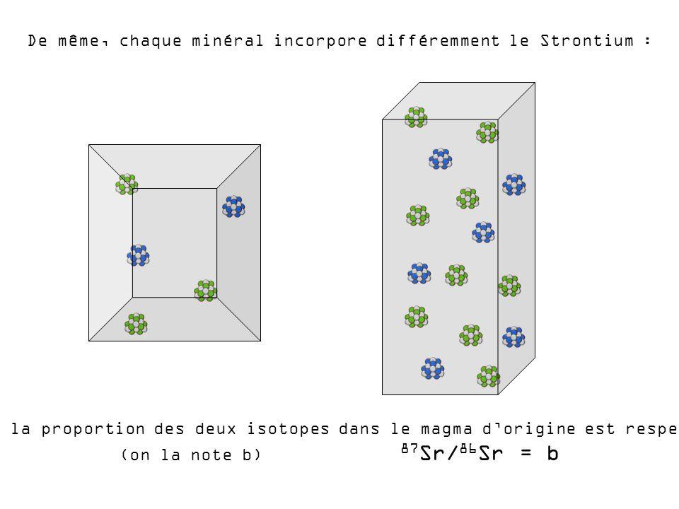 De même, chaque minéral incorpore différemment le Strontium :