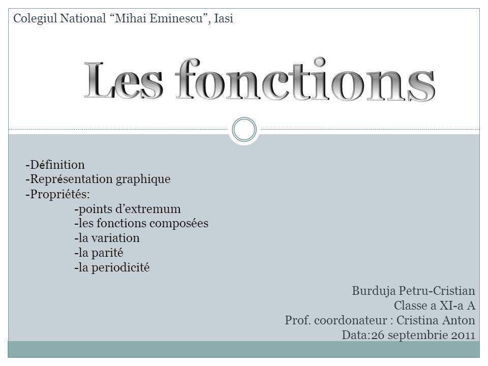 Les fonctions Colegiul National Mihai Eminescu , Iasi -Définition