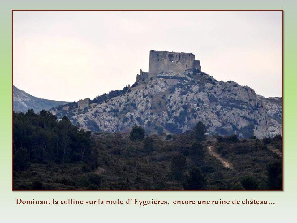 Dominant la colline sur la route d' Eyguières, encore une ruine de château…