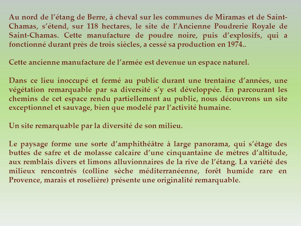 Au nord de l'étang de Berre, à cheval sur les communes de Miramas et de Saint-Chamas, s'étend, sur 118 hectares, le site de l'Ancienne Poudrerie Royale de Saint-Chamas. Cette manufacture de poudre noire, puis d'explosifs, qui a fonctionné durant près de trois siècles, a cessé sa production en 1974..