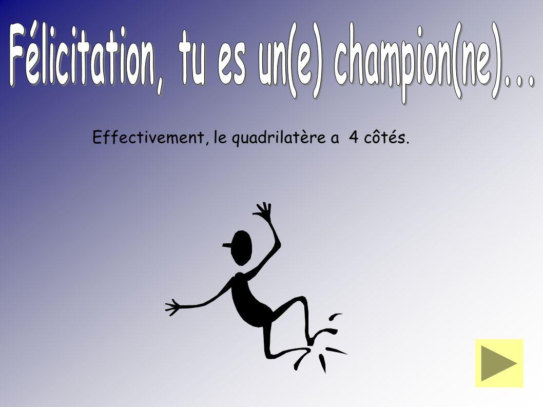 Félicitation, tu es un(e) champion(ne)...