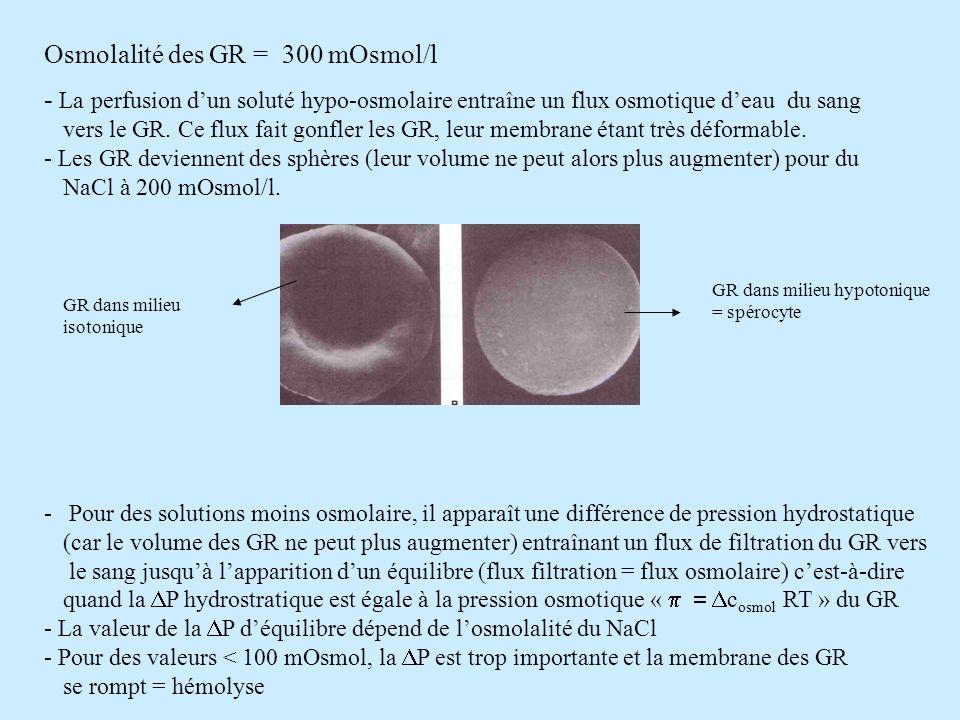 Osmolalité des GR = 300 mOsmol/l