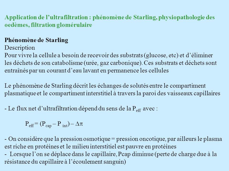 Application de l'ultrafiltration : phénomène de Starling, physiopathologie des