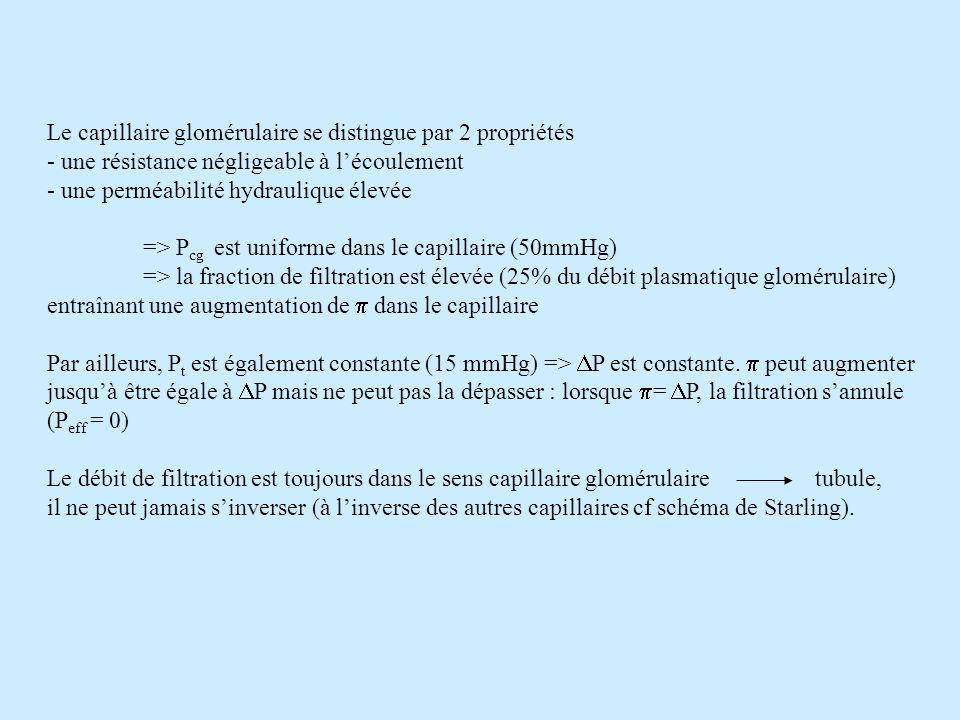Le capillaire glomérulaire se distingue par 2 propriétés