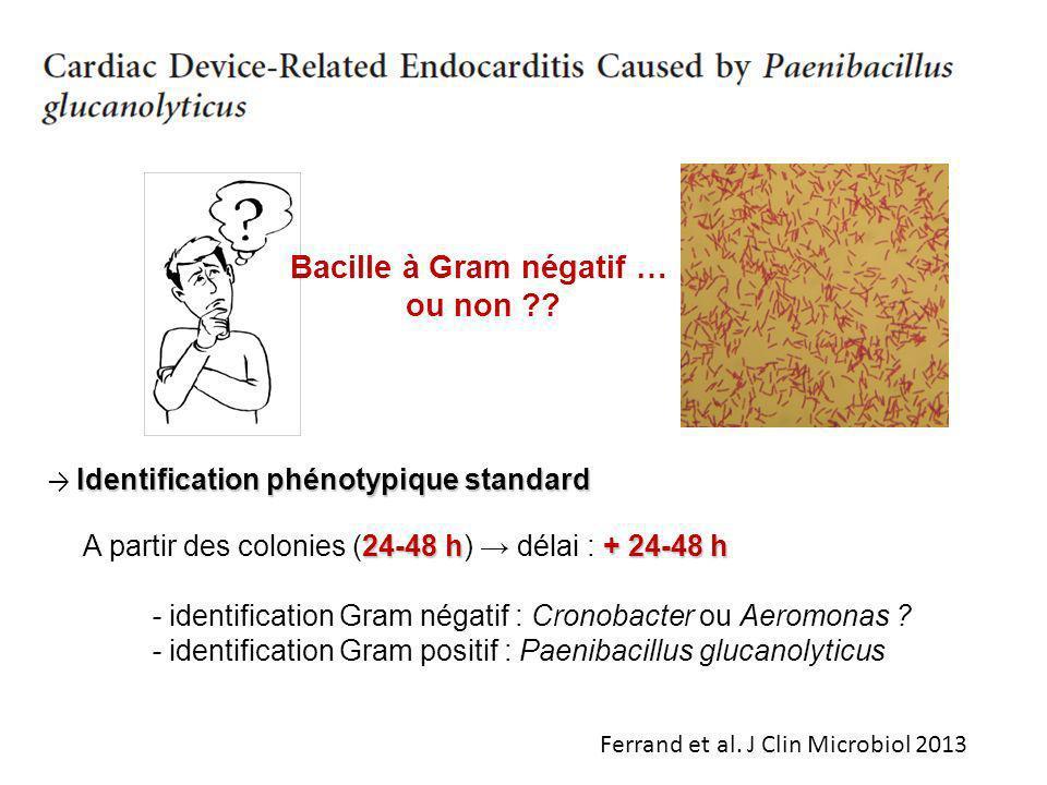 Bacille à Gram négatif …