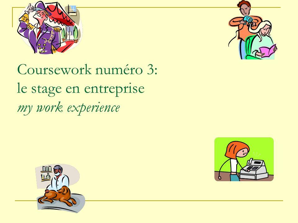 Coursework numéro 3: le stage en entreprise my work experience