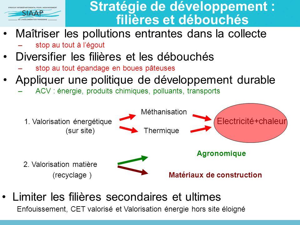 Stratégie de développement : filières et débouchés